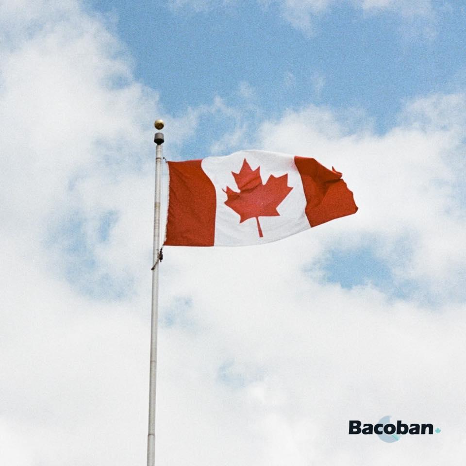 Bacoban canadian flag