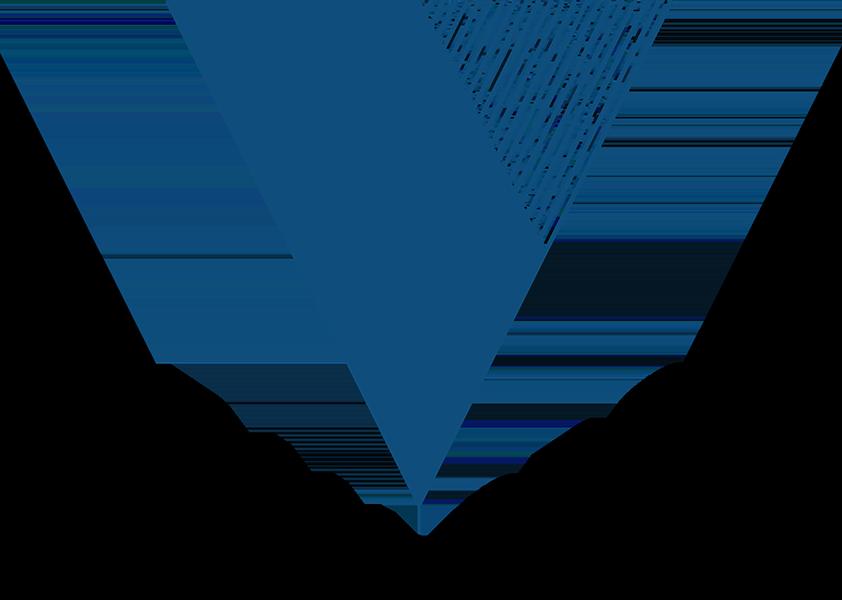 Voran Group